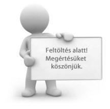 XPRO Magnetic tok (180°) átlátszó - ezüst kerettel iPhone X/XS